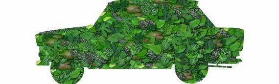 Comment adopter une conduite plus écologique ?